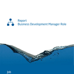 Saville Assessment WAVE Job Profiler Exemple de Rapport