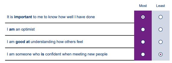 Saville Assessment WAVE Professional Styles Questionnaire Ipsatif Exemple