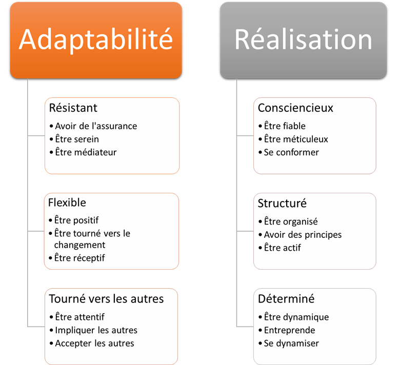 Traits de Personnalité des Tests Wave de Saville Assessment