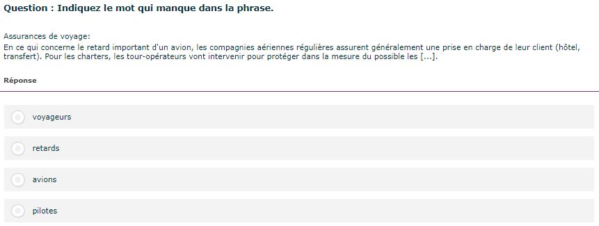 Test linguistique informatisé du Selor : indiquez le mot adéquat pour compléter la phrase